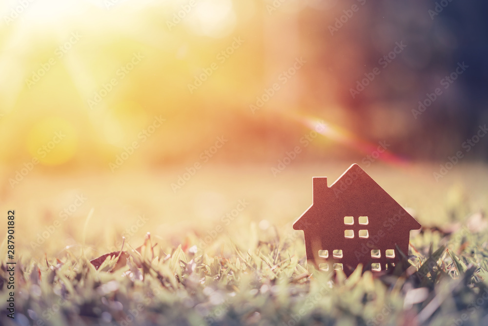Fototapeta Copy space of home and life concept. Small model home on green grass with sunlight abstract background.