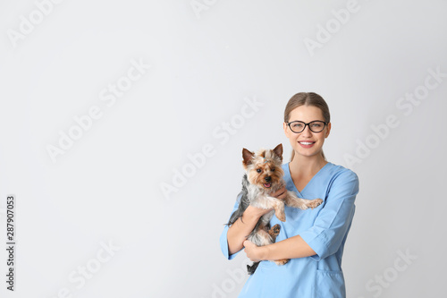 obraz lub plakat Veterinarian with cute dog on light background