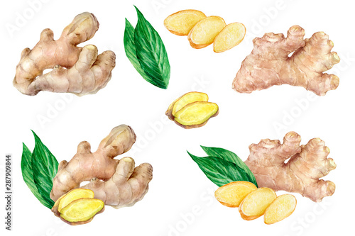 Fotografia Ginger set watercolor isolated on white background