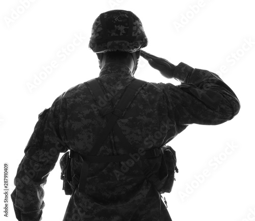 Silhouette of saluting soldier on white background, back view Fototapet