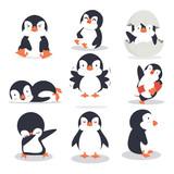 Fototapeta Fototapety na ścianę do pokoju dziecięcego - Cute little penguin different poses set