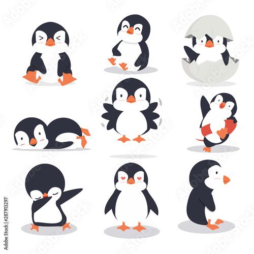 Cute little penguin different poses set