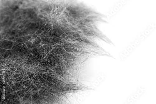 Fényképezés Macro Image of Black and White Cat Hair Collected After Grooming Session