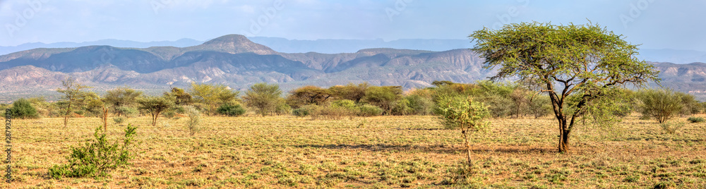 Fototapeta Panorama of Awash national park landscape with acacia tree in front and mountain in background, Awash Ethiopia Africa