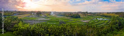Foto auf Gartenposter Reisfelder Rice terraces at sunrise