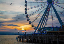Ferris Wheel On Coast Of Seattle At Sunset With Birds