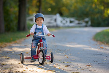 Sweet Toddler Boy, Riding Tricycle In The Park On Sunset, Autumn Time