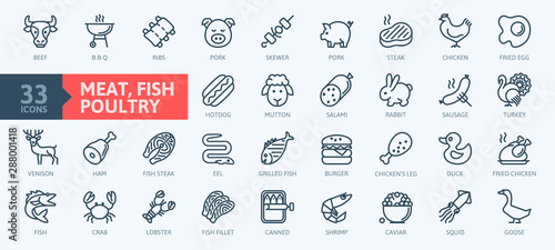 Meat, poultry, fish and eggs - minimal thin line web icon set. Outline icons collection.Simple vector illustration.
