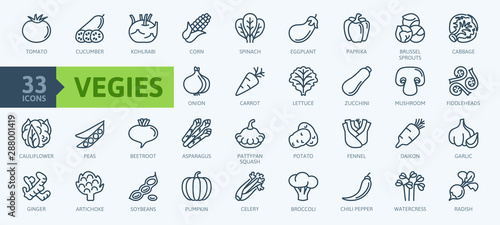 Obraz Vegetarian, vegetable, veggies - minimal thin line web icon set. Included the simple vector icons as tomato, cucumber, kohlrabi, cauliflower, pattypan squash, fiddleheads,daikon. Outline icons collect - fototapety do salonu