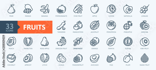 Fényképezés Fruits, exotic fruits, vegetarian - minimal thin line web icon set