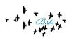 A flock of flying birds. Vector illustration