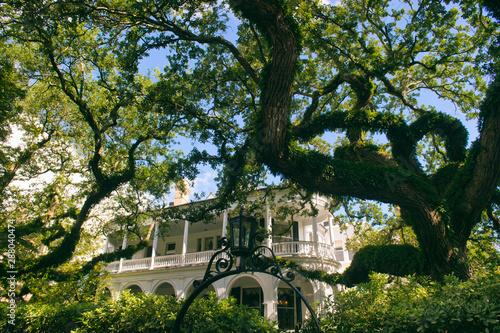 Scenic view through oak trees of classic antebellum architecture in the historic Canvas Print