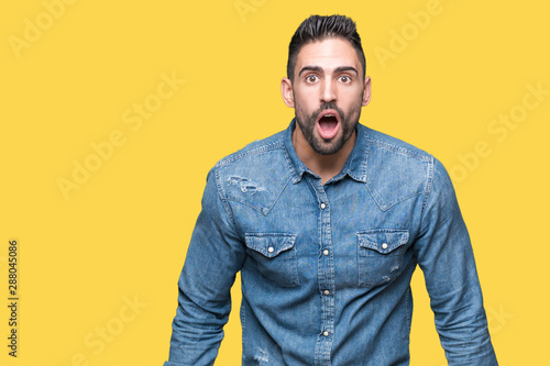 Cuadros en Lienzo Young handsome man over isolated background afraid and shocked with surprise expression, fear and excited face