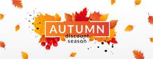 Autumn Fall Season Sale Ad Banner.