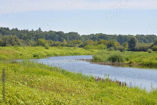 Fototapeta River at sunny day. obraz na płótnie