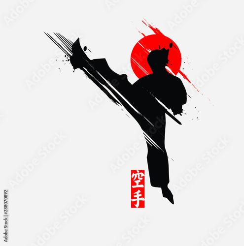 Martial arts silhouette character logo illustration Wallpaper Mural