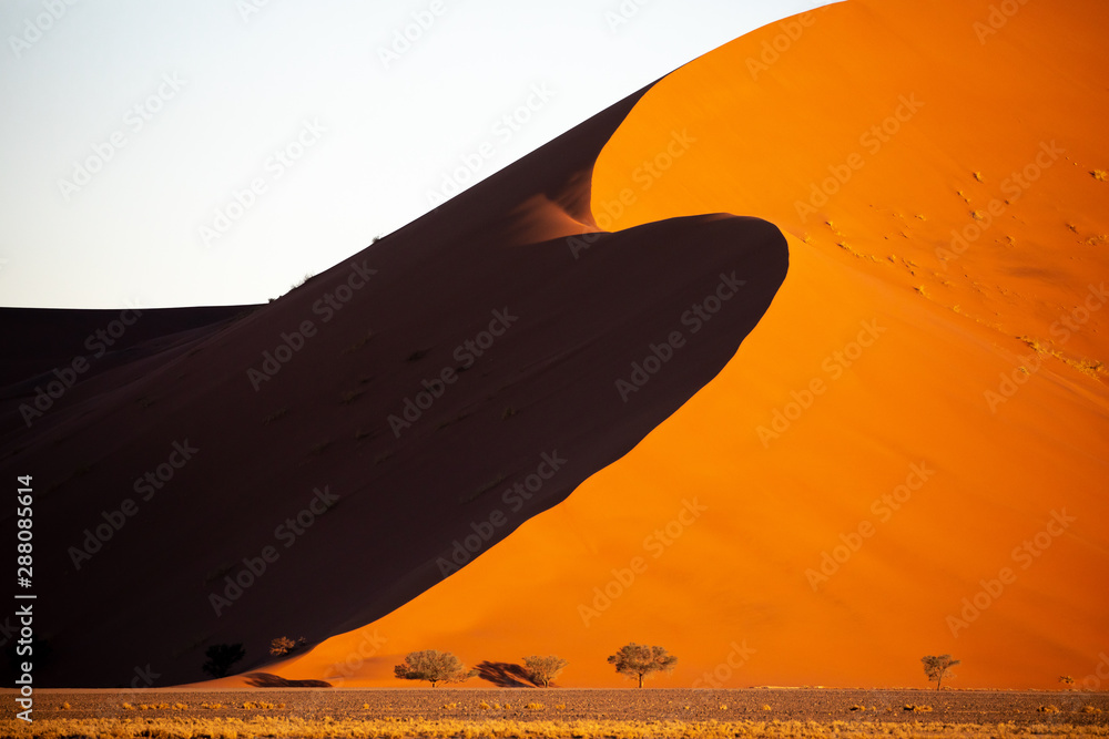 Fototapety, obrazy: Deep colors of sand dunes during sunset. Sossusvlei, Namibia.