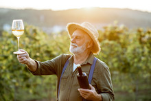 Portrait Of A Senior Well-dressed Winemaker Checking The Wine Quality On The Vineyard During A Sunset. Concept Of A Winemaking In Older Age