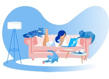 Woman Lying On Couch With Laptop And Cats Around