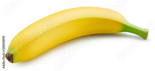 Obraz na plátně  Bunch of bananas isolated