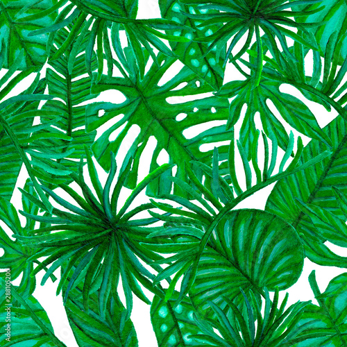 Fototapety, obrazy: Seamless pattern with tropical leaf palm. Watercolor.