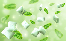 Mint Flavor Gum With Leaf Mint On Light Green Background. Vector Realistic Illustration