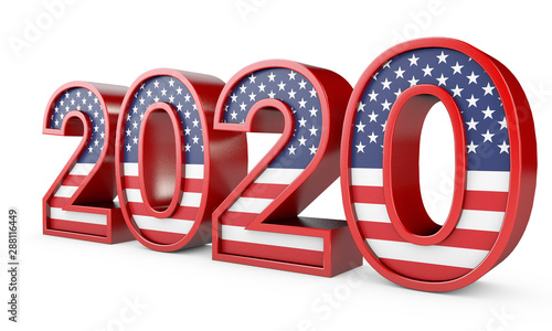 Fotografie, Tablou  2020 United States of America Presidential Election sign