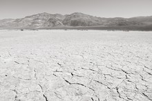 Mojave Desert. Black And White...