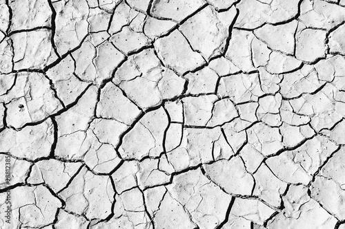 Fotografía  Desert ground. Black and white vintage style.