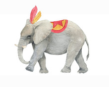 Hand Drawn Watercolor Circus Elephant In Costume. Isolated Animal Drawing For Card, Banner Template, Flyer, Advertisement