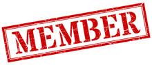 Member Stamp. Member Square Gr...