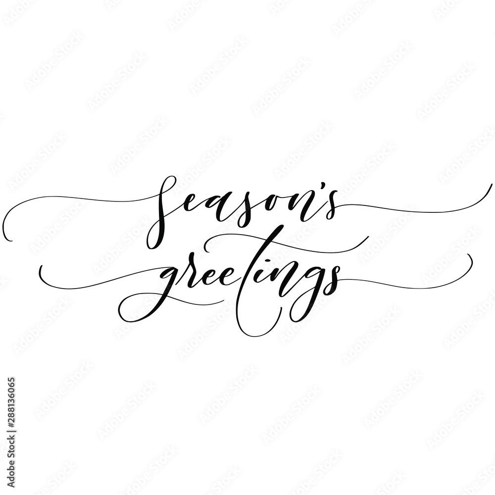 Fototapeta Season's greetings brush script calligraphy isolated on white background. Type vector illustration.