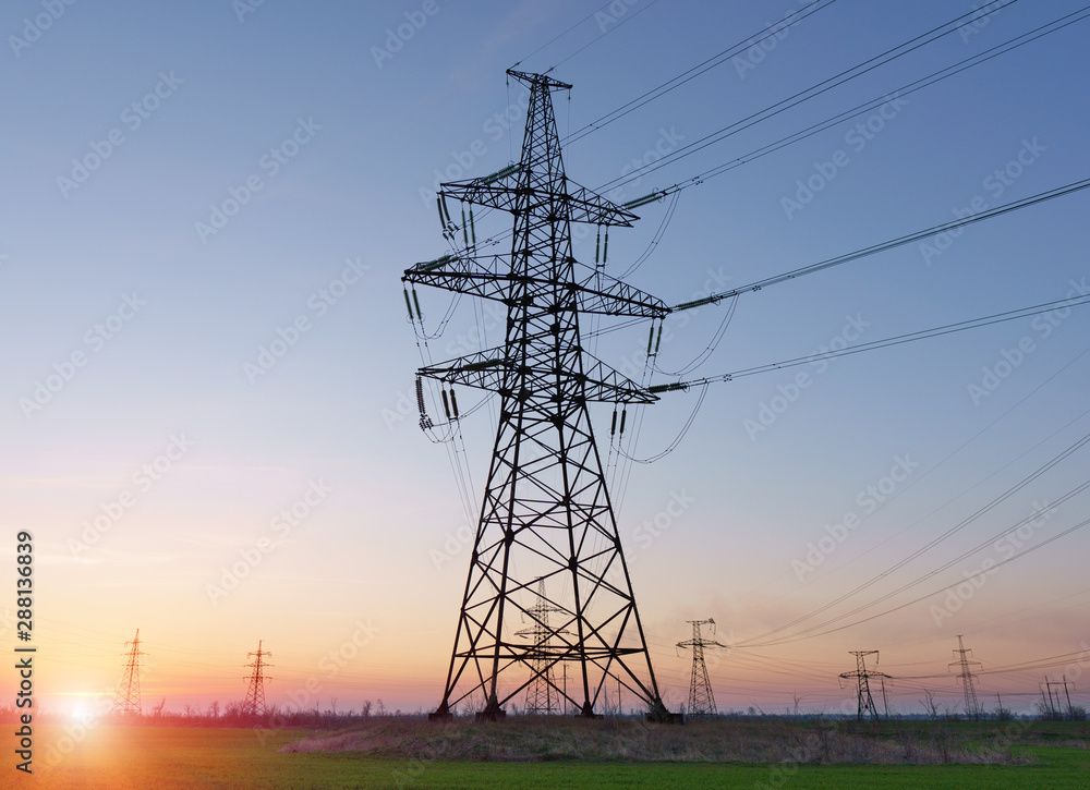 Fototapety, obrazy: High voltage lines and power poles and green agricultural landscape during sunrise.