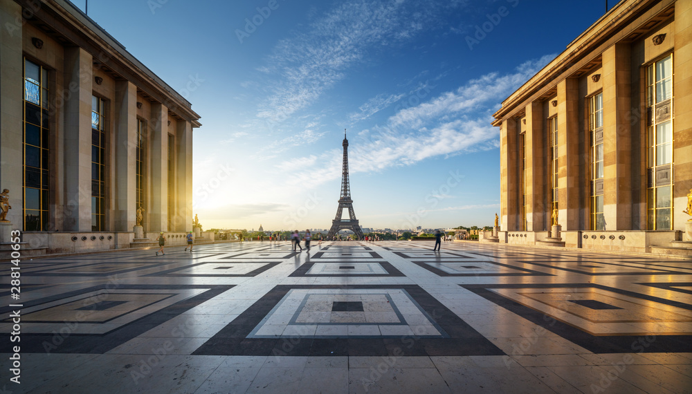 Fototapety, obrazy: Early morning view of Eiffel Tower, Paris, France