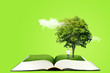 canvas print picture - Ecology and Education Concept : Miniature figure character as people standing below green tree on opened book and reading a book.