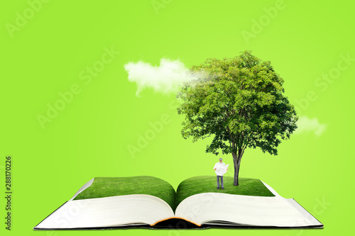 Foto auf AluDibond Lime grun Ecology and Education Concept : Miniature figure character as people standing below green tree on opened book and reading a book.