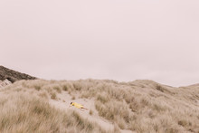 Girl In Yellow Dress On Dunes