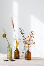 Vintage Glass Medicine Bottles With Dried Grasses, Berries And Seed Heads From The Autumn Garden. Still Life.