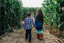 Kids Explore A Corn Maze On A Fall Day