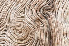 Wood Grain Patterns