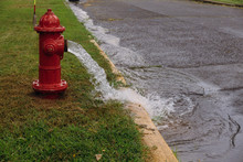 Open Fire Hydrant Water Flowin...