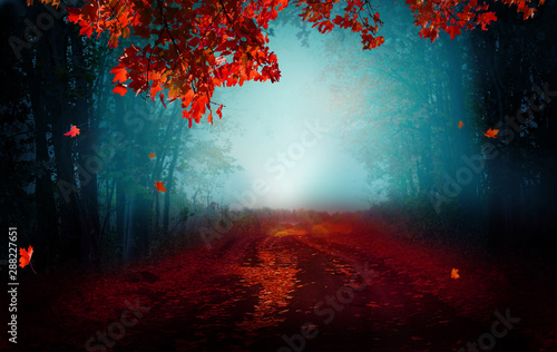 Obraz Fantasy background . Magic forest.Beautiful autumn landscape. - fototapety do salonu