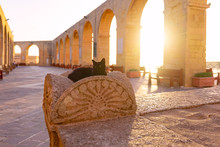 Shot From Cannon In Valletta, ...