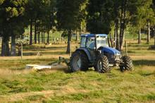 Mowing Pasture
