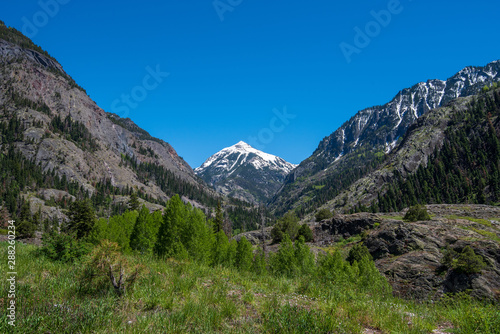 Low angle landscape of mountain tops and trees near Ouray, Colorado