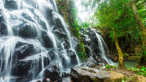 Fotografie, Obraz  Under a cascading waterfal surrounded by lush rainforest