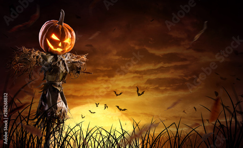 Garden Poster Culture halloween pumpkin scarecrow on a wide field with the moon on a scary night