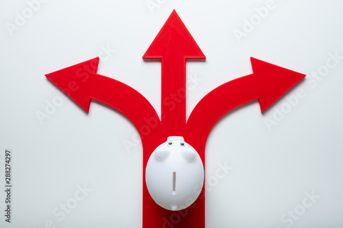 White Piggybank Over Red Arrow Signs Showing Various Direction Canvas Print