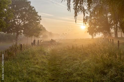 Fototapeten Natur Atmospheric Sunrise with fog along the river Leie in Lauwe, Menen, Belgium