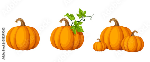 Foto Vector set of orange pumpkins isolated on a white background.